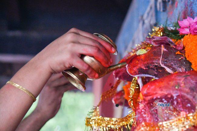 काठमाडौंको नागपोखरीमा यसरी गरियो नाग पूजा (फोटोफिचर)