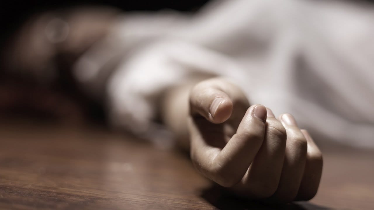 सडकबाट उद्धार गरिएकामध्ये ७ को मृत्यु