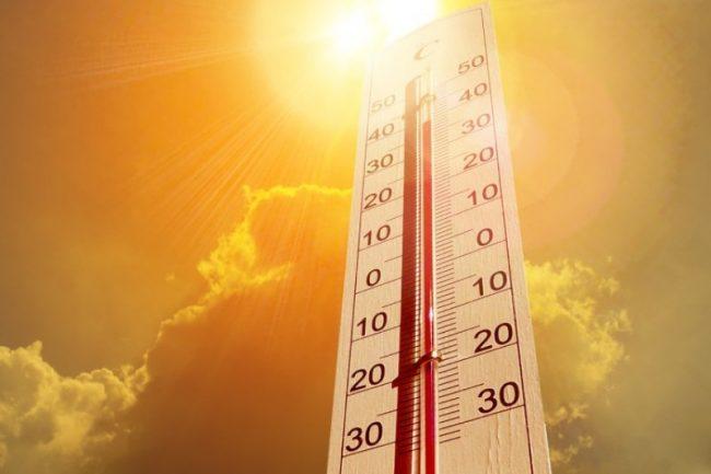 गर्मीका कारण जापानमा २३ को मृत्यु, १३ हजार बिरामी