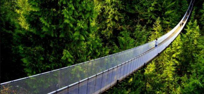 झोलुङ्गे पुल निर्माण गर्न दैनिक आठ घण्टा सडक बन्द