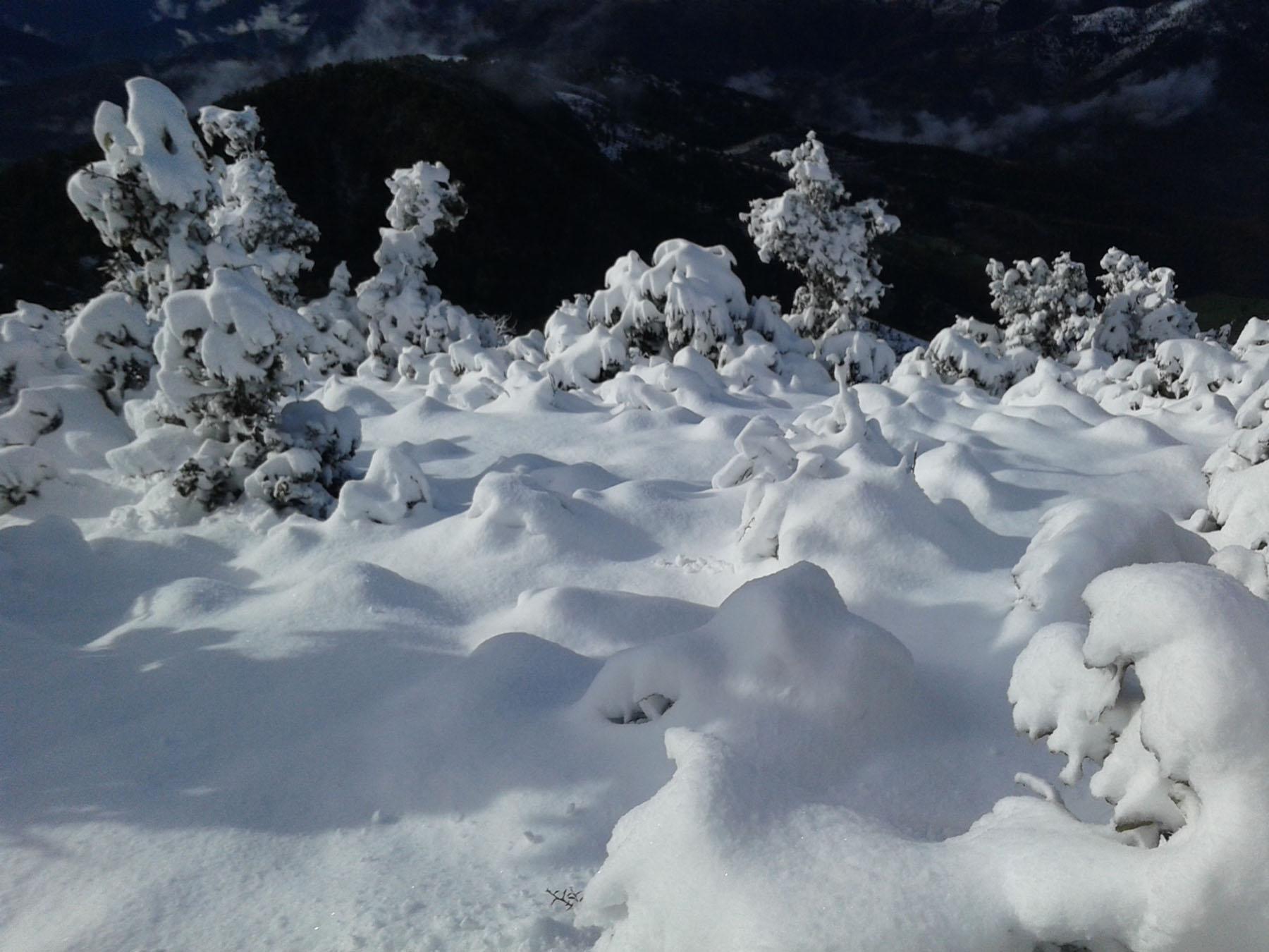 डोल्पामा हिमपात, जनजीवन कष्टकर
