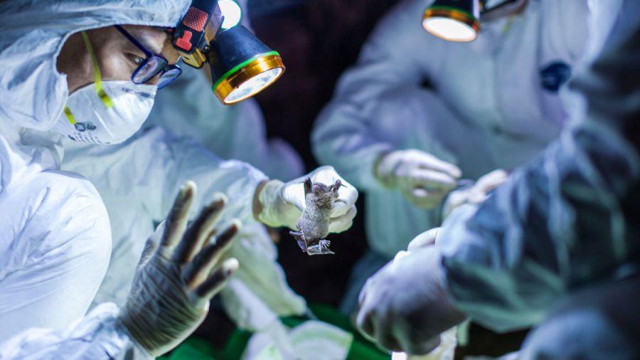 कोरोनाभाइरस लागेर पहिलो पटक अमेरिकी नागरिकको मृत्यु, मृतकको संख्या ७ सय २५ पुग्यो