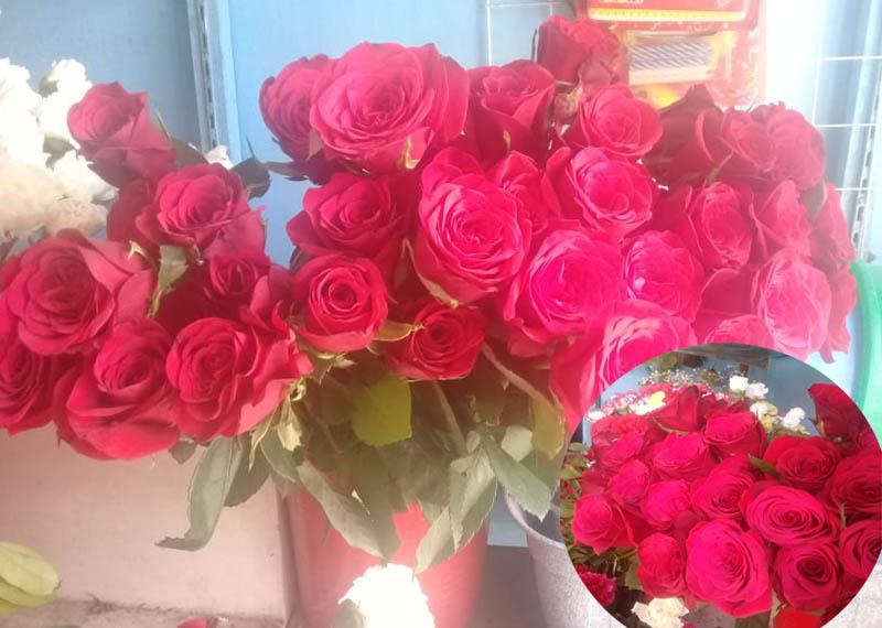प्रेमदिवसको लागि १ करोड बराबरको गुलाब भारतबाट आयात