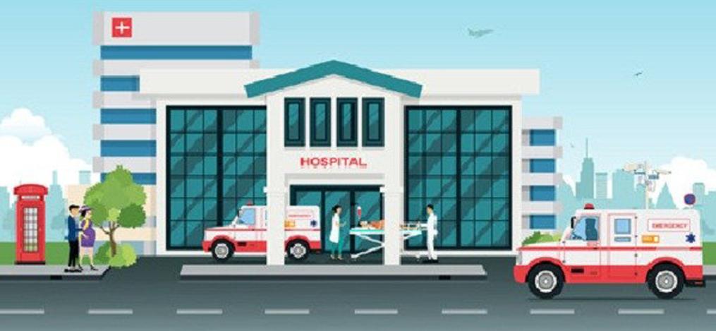 स्थानीय तहमा आधारभूत अस्पताल: हात्ती आयो, हात्ती आयो फुस्सा !