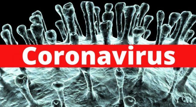 कोरोना महामारीः भारतमा ज्यान गुमाउनेको संख्या ९१ पुग्यो, २५९० संक्रमित