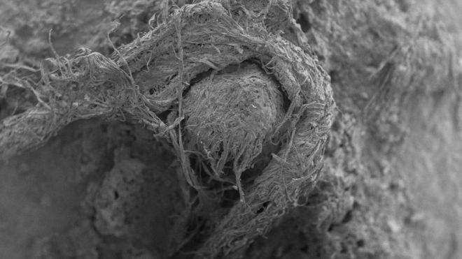 आदिमानव बसेको गुफामा ५० हजार वर्ष पुरानो डोरी भेटियो