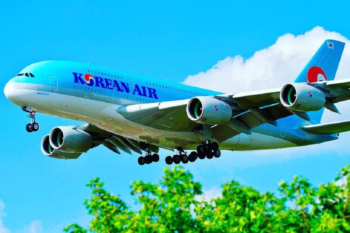 २३५ यात्रु बोकेर फर्कियो कोरियन एयर