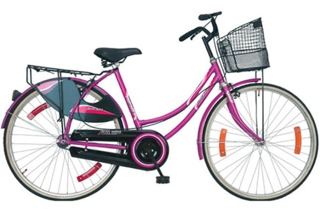 स्वास्थ्यसम्बन्धी जानकारी दिन स्वयंमसेविकालाई साइकल वितरण