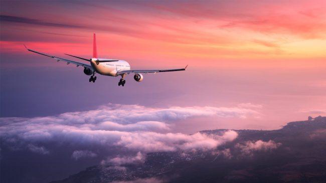 उडिरहेको विमान भित्र जुम्ल्याहा बालिकाको जन्म
