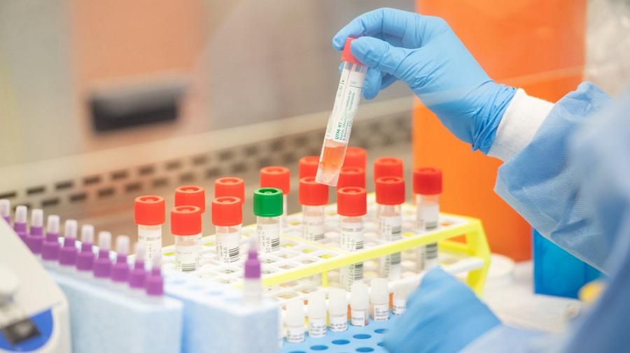 नुवाकोटमा एकैदिन ८ जनामा कोरोना संक्रमण