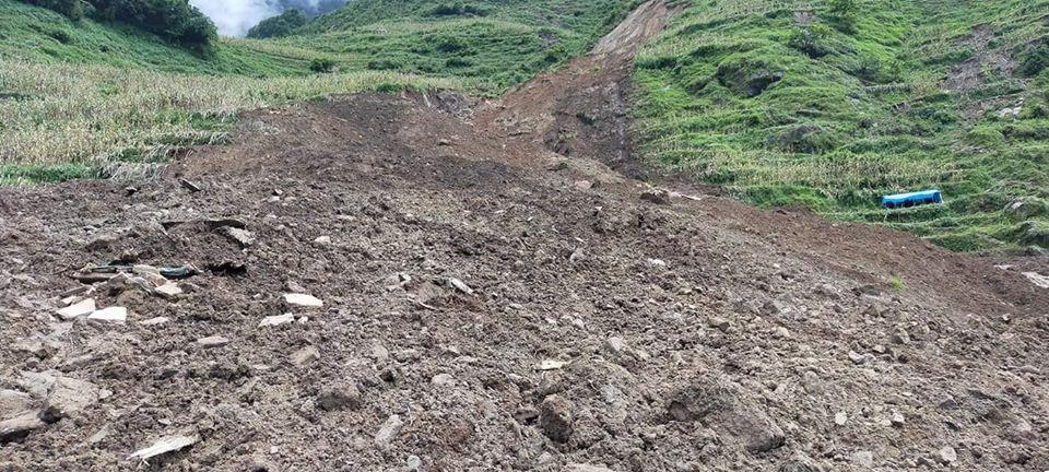 सन् २०२० मा विपद्जन्य घटनाबाट नेपालमा पाँच हजारको मृत्यु