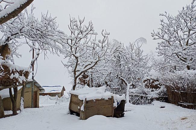 हुम्लामा भारी हिमपात, जनजीवन कष्टकर (फाेटाेफिचर)