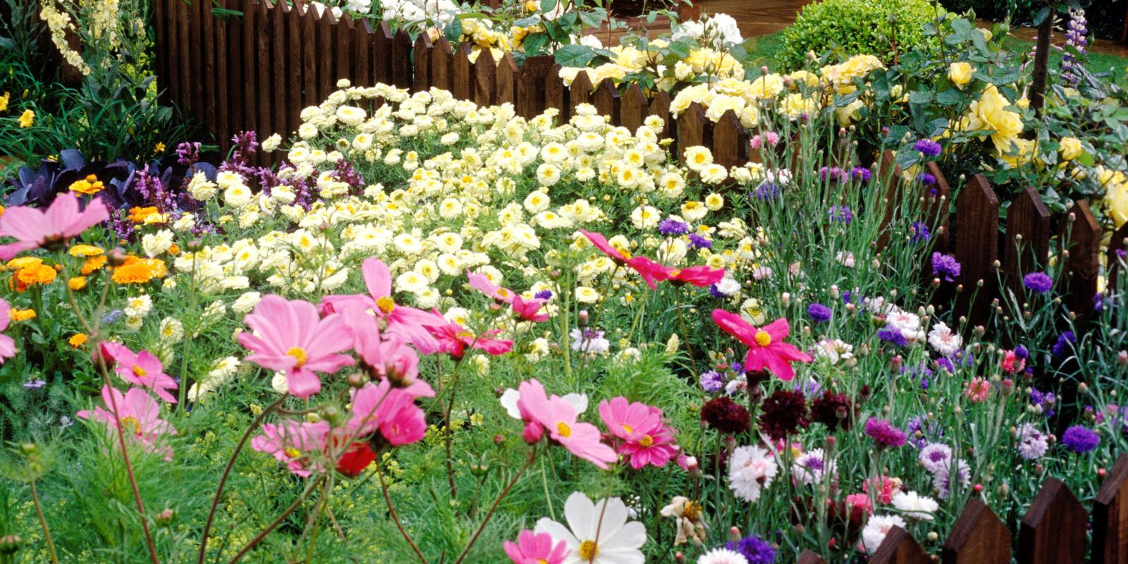 फलफूल बगैँचा बनाउँदै खोटेहाङ