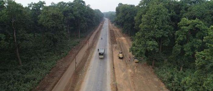 नारायणगढ–बुटवल सडकखण्ड विस्तारका लागि रुख काटिँदै