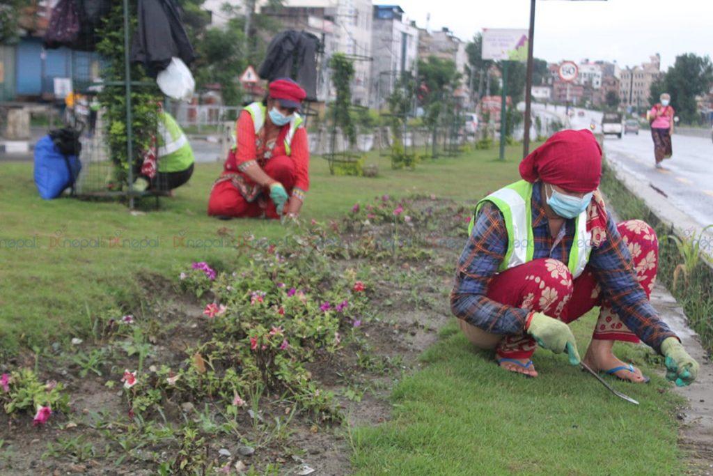 काठमाडौं उपत्यकाको सौन्दर्यताका लागि वृक्षारोपण र बगैंचा निर्माण (फोटोफिचर)