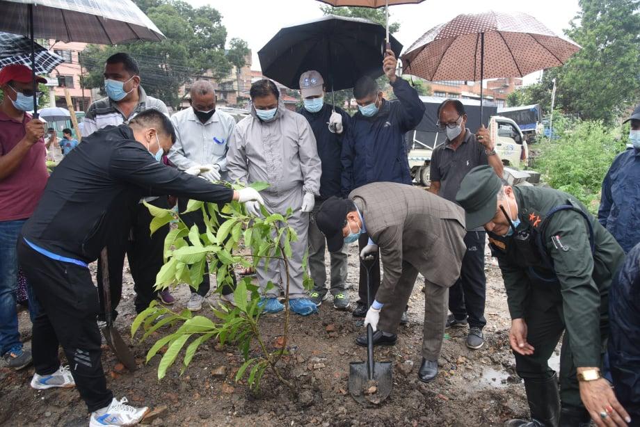 काठमाडौं महानगरमाको वृक्षारोपण अभियान शुरु
