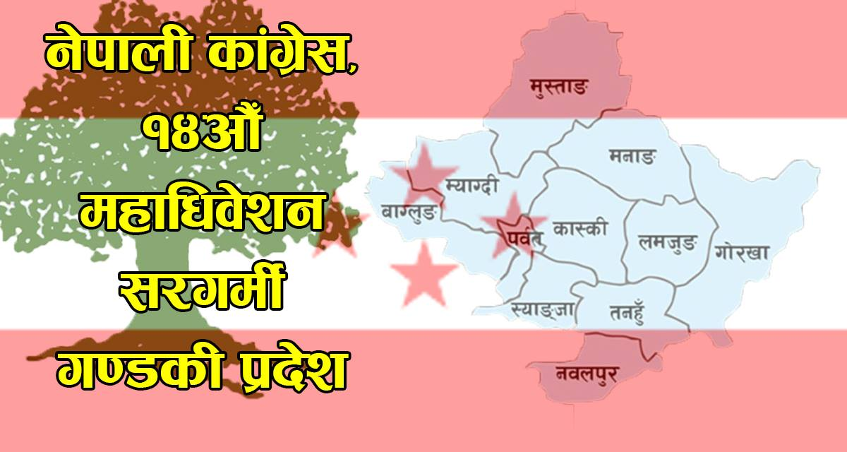 कांग्रेस महाधिवेशन : गण्डकी प्रदेशमा को को छन् जिल्ला सभापतिको आकांक्षी ?