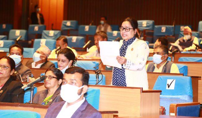 प्रतिनिधिसभा बैठकः कोभिड–१९ खोपदेखि नागरिकतासम्मका विषयमा ध्यानाकर्षण